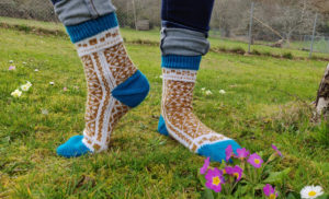 {Tricot} Levitation Lessons socks
